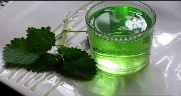 Domaći sok od koprive - lekovitost i recept kako se pravi